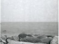 img303