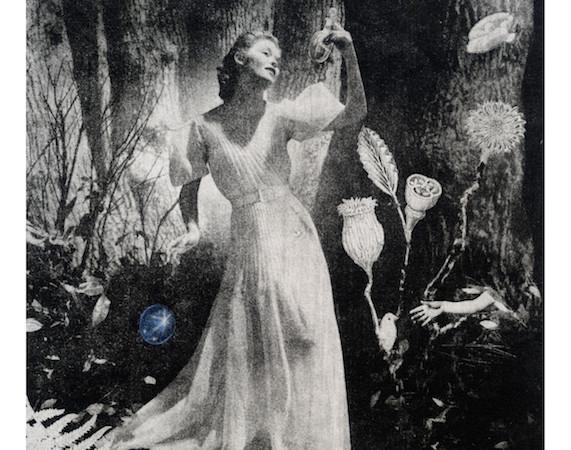 「La forêt, l'extase  : 恍惚の森 」 軽